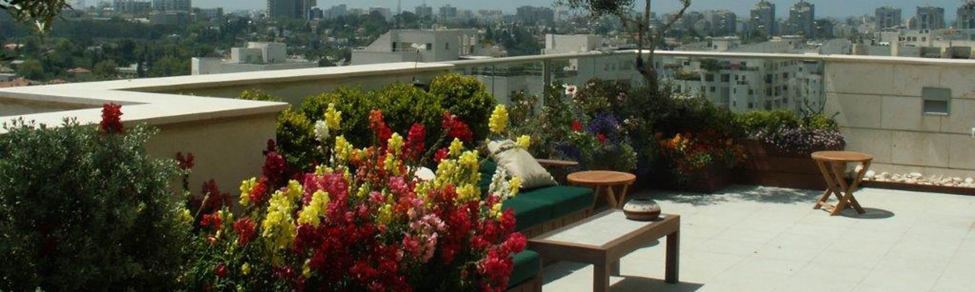 גינת גג מעוצבת עם פרחים צבעוניים