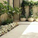 כדים מעוצבים וצמחייה בכניסה לבית פרטי