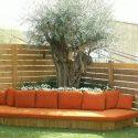 גינה גדולה עם גדר עץ מספה כתומה