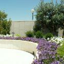 ספות לבנות משולבות עם אדניות בצבע תואם וצמחייה שונה על גג של בניין