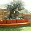 ספה ענקית בגינת גג עם עץ זית